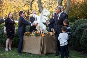 president-obama039s-final-turkey-pardon